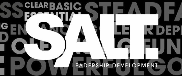 Huisstijl SALT Leadership Development
